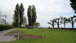 01-Seepark.jpg
