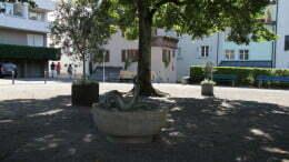 30-Lindenplatz.jpg
